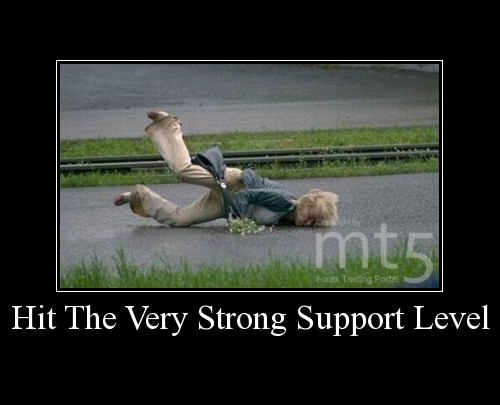 Hit The Very Strong Support Level