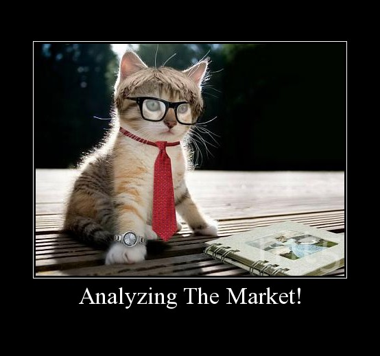 Analyzing The Market!