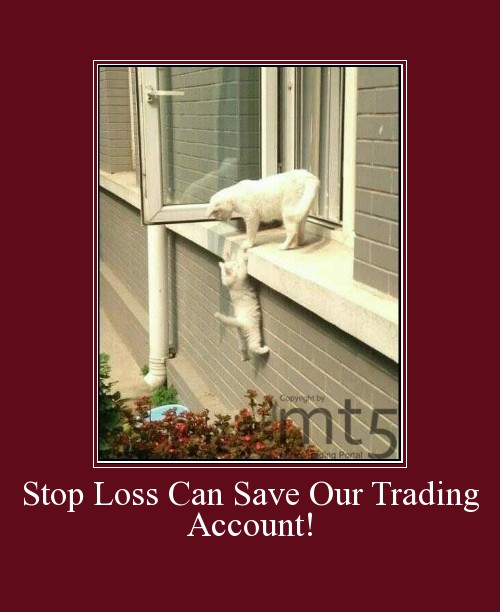 Stop Loss Can Save Our Trading Account!