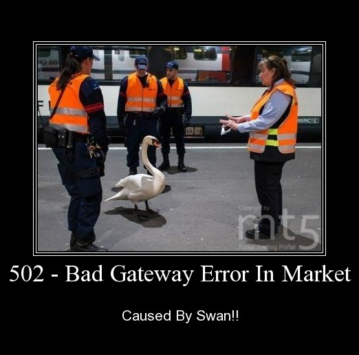 502 - Bad Gateway Error In Market
