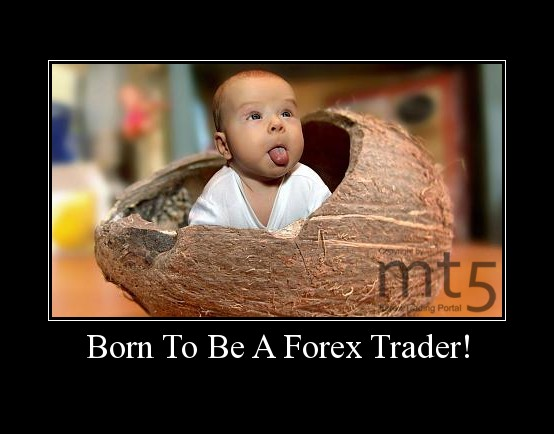 Born To Be A Forex Trader!