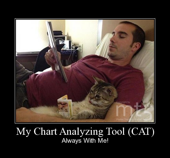 My Chart Analyzing Tool (CAT)