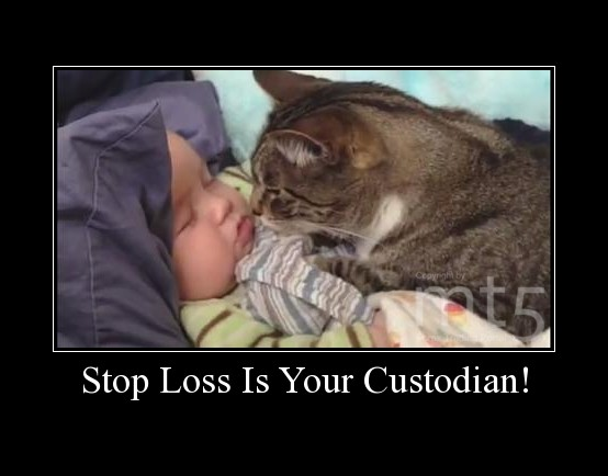 Stop Loss Is Your Custodian!
