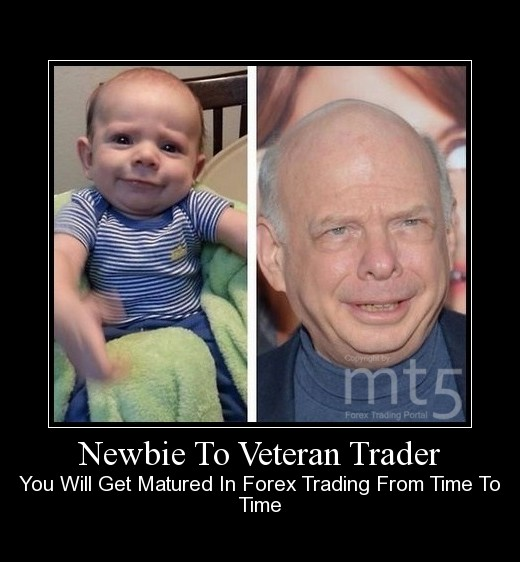 Newbie To Veteran Trader