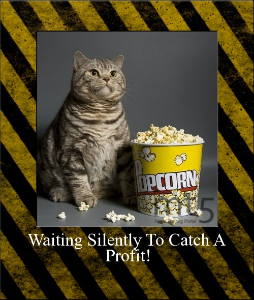 Waiting Silently To Catch A Profit!