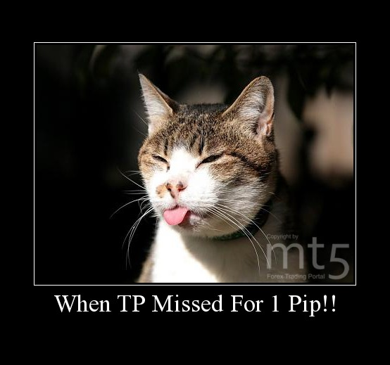 When TP Missed For 1 Pip!!