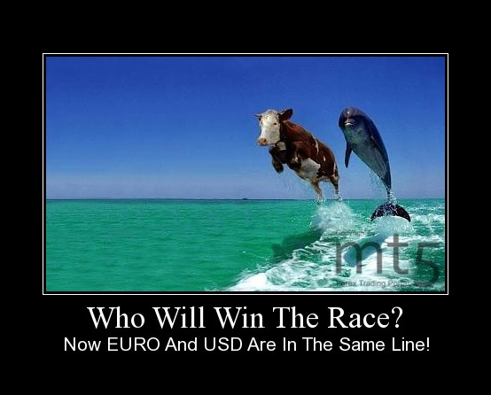 Who Will Win The Race?