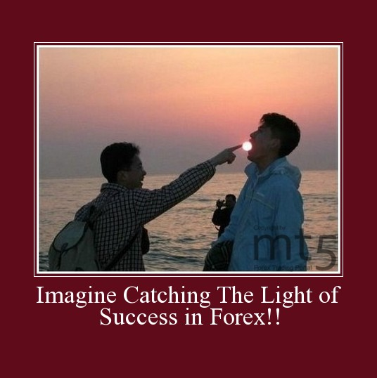 Imagine Catching The Light of Success in Forex!!