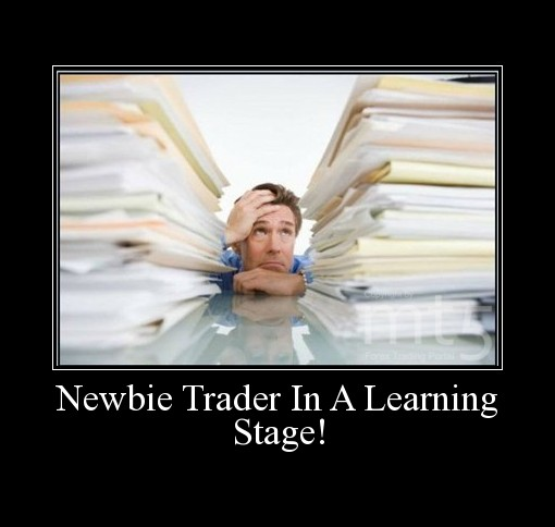 Newbie Trader In A Learning Stage!