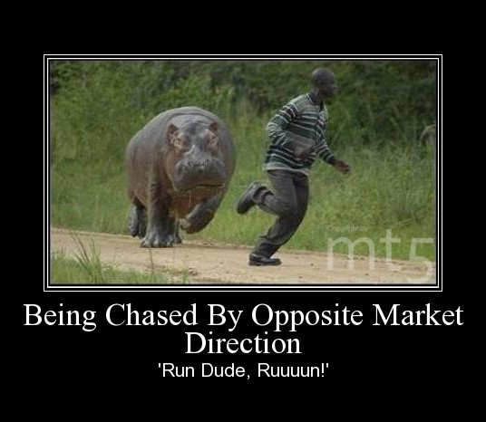 Being Chased By Opposite Market Direction
