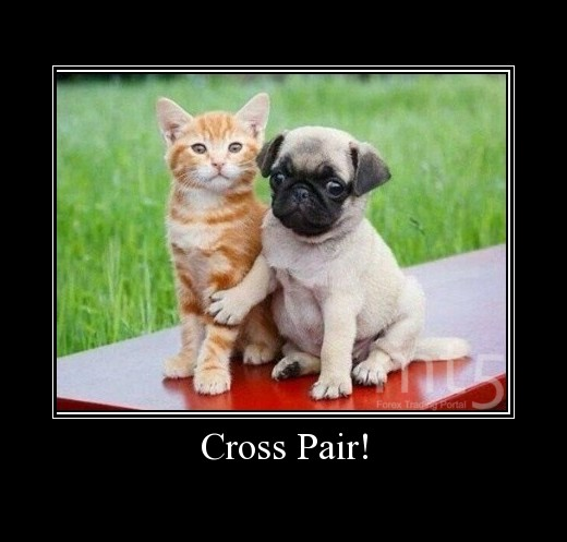 Cross Pair!