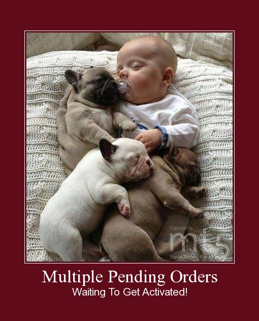Multiple Pending Orders