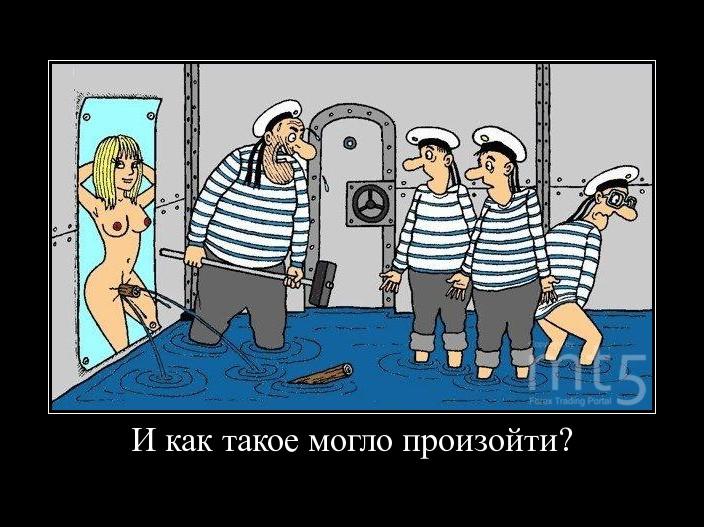 http://forex-images.mt5.com/humor/dem/d06abd7dab03c54a5097a6362b8f65b6.JPG
