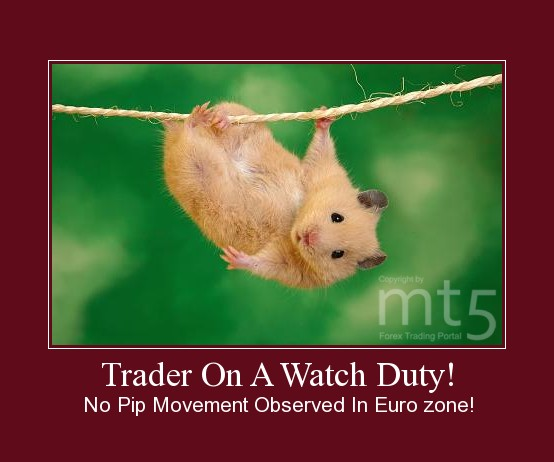 Trader On A Watch Duty!