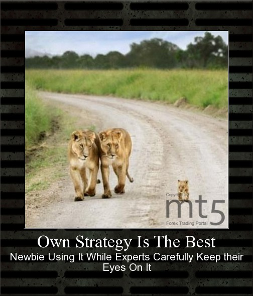 Own Strategy Is The Best