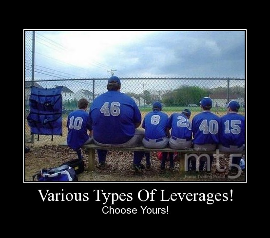 Various Types Of Leverages!