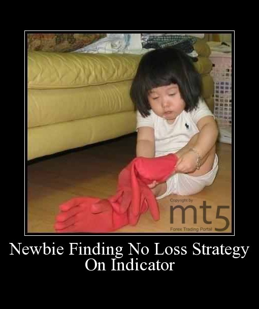 Newbie Finding No Loss Strategy On Indicator