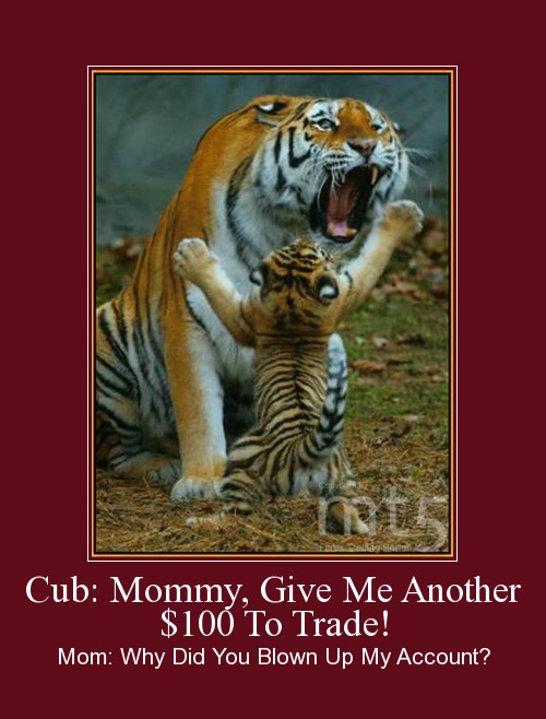 Cub: Mommy, Give Me Another $100 To Trade!