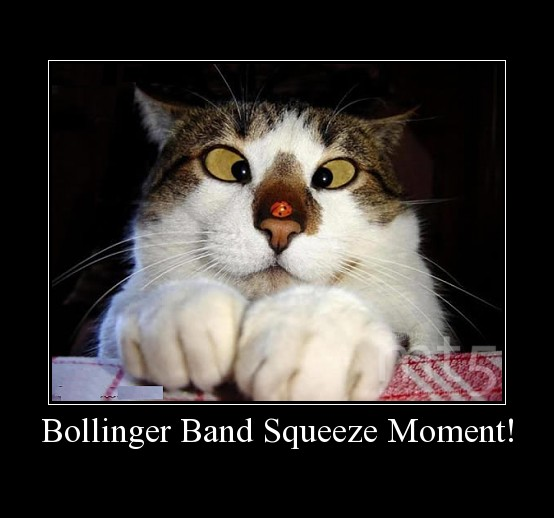 Bollinger Band Squeeze Moment!