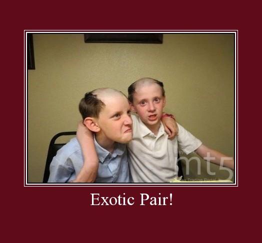 Exotic Pair!