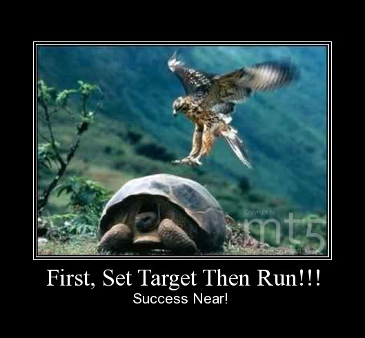 First, Set Target Then Run!!!