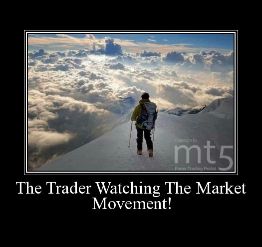 The Trader Watching The Market Movement!