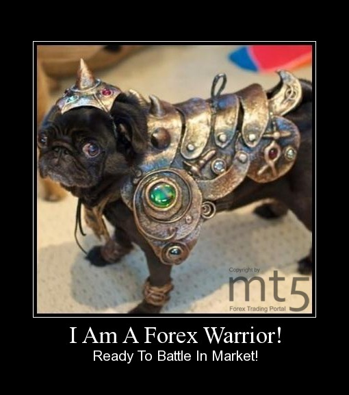 I Am A Forex Warrior!