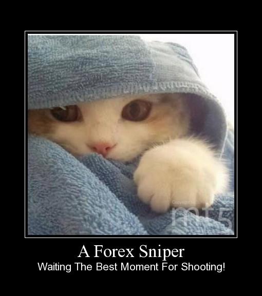 A Forex Sniper