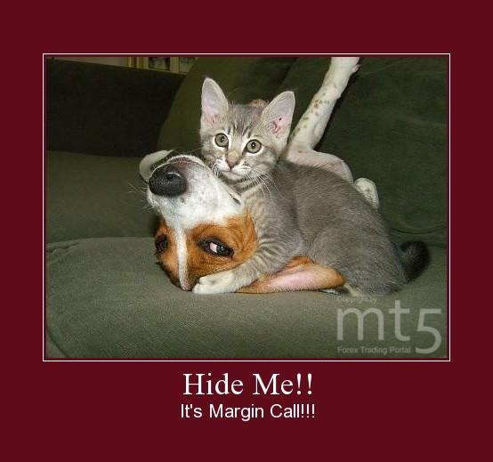 Hide Me!!
