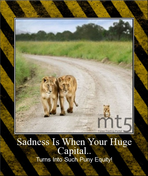 Sadness Is When Your Huge Capital..