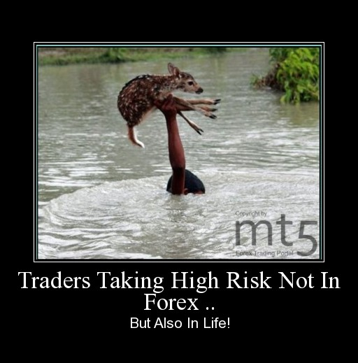 Traders Taking High Risk Not In Forex ..