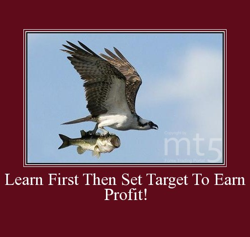 Learn First Then Set Target To Earn Profit!
