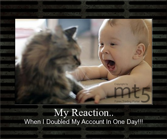 My Reaction..