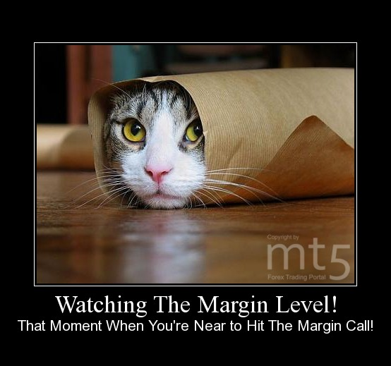 Watching The Margin Level!