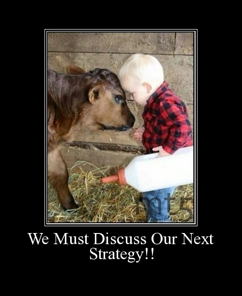 We Must Discuss Our Next Strategy!!