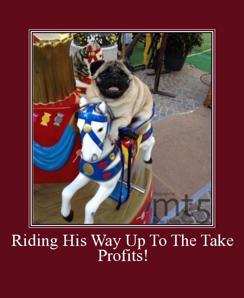 Riding His Way Up To The Take Profits!