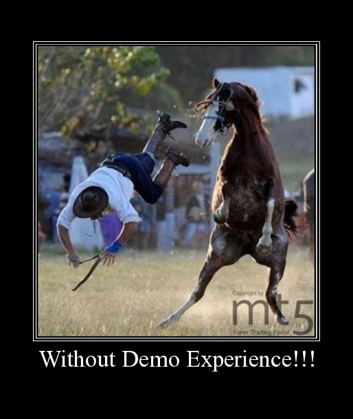 Without Demo Experience!!!