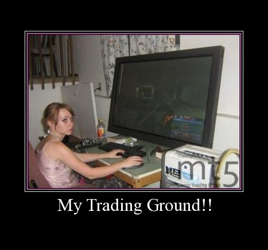 My Trading Ground!!
