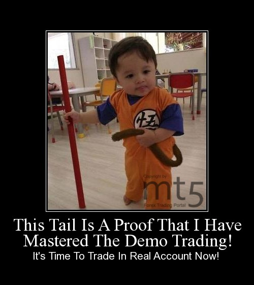 This Tail Is A Proof That I Have Mastered The Demo Trading!