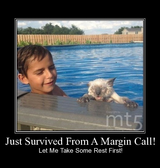 Just Survived From A Margin Call!