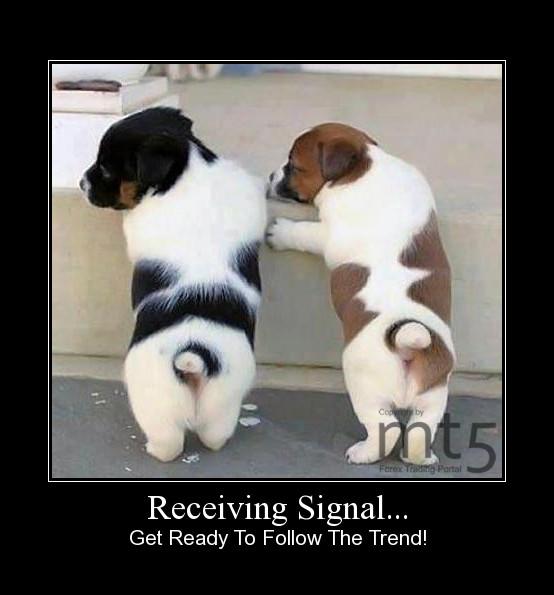 Receiving Signal...