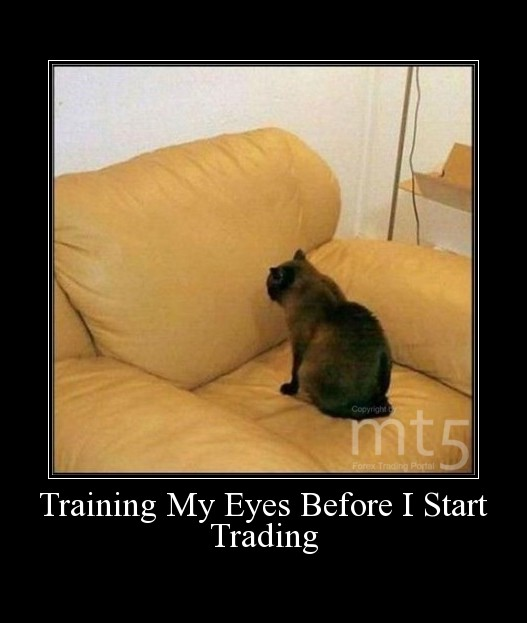 Training My Eyes Before I Start Trading