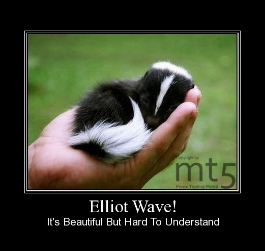 Elliot Wave!