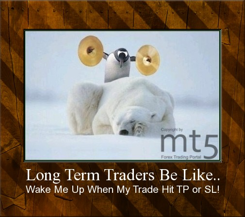 Long Term Traders Be Like..
