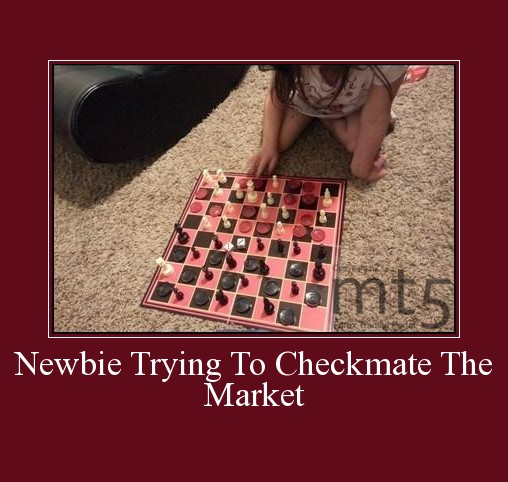 Newbie Trying To Checkmate The Market
