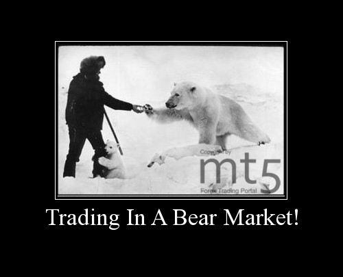 Trading In A Bear Market!