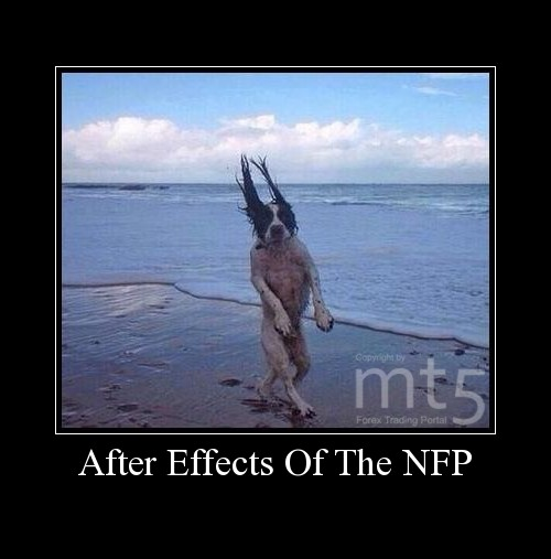 After Effects Of The NFP