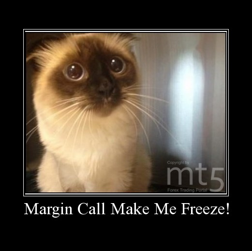 Margin Call Make Me Freeze!