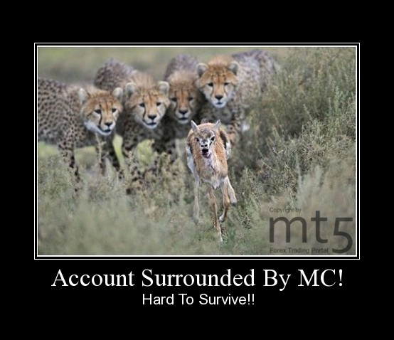 Account Surrounded By MC!