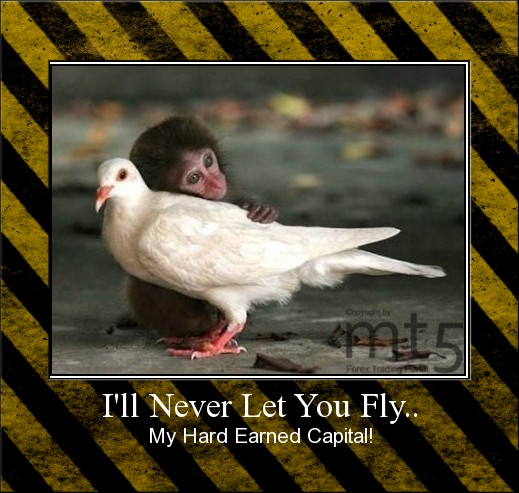 I'll Never Let You Fly..